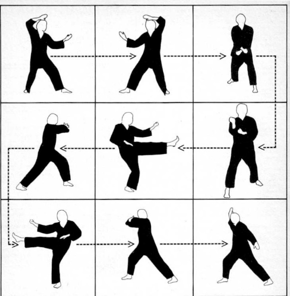 martial arts exercise