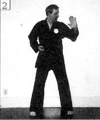 shotokan karate basics