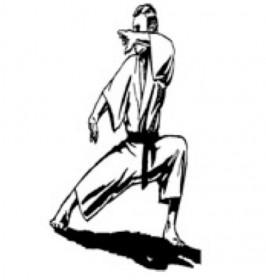 karate, kung fu, pan gai noon