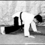 martial arts training one
