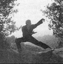 kung fu ranking