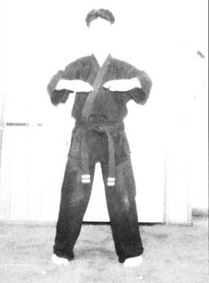 martial art defined