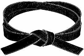 beyond black belt martial arts